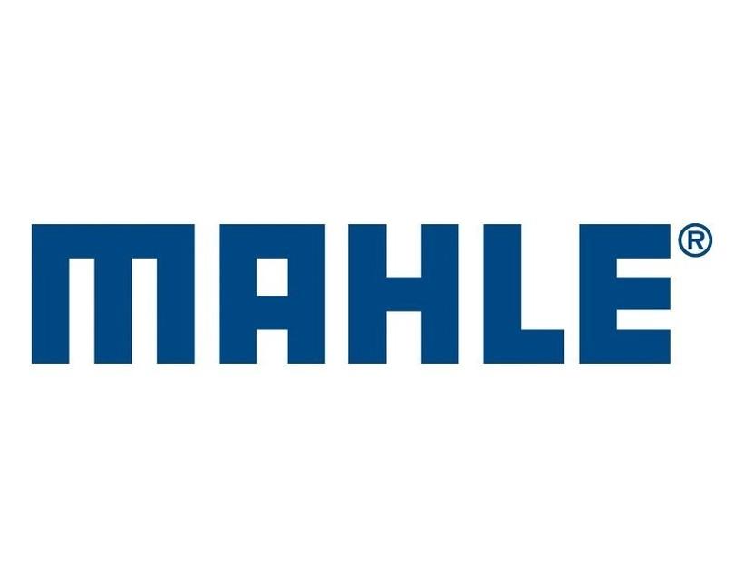 MAHLE Electric Drives Slovenija - ONLINE Regionalni zaposlitveni sejem