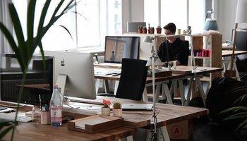 Resnica o konceptu odprtih pisarn